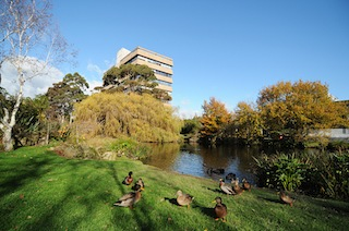 Massey University Manawatu campus located in Palmerston North