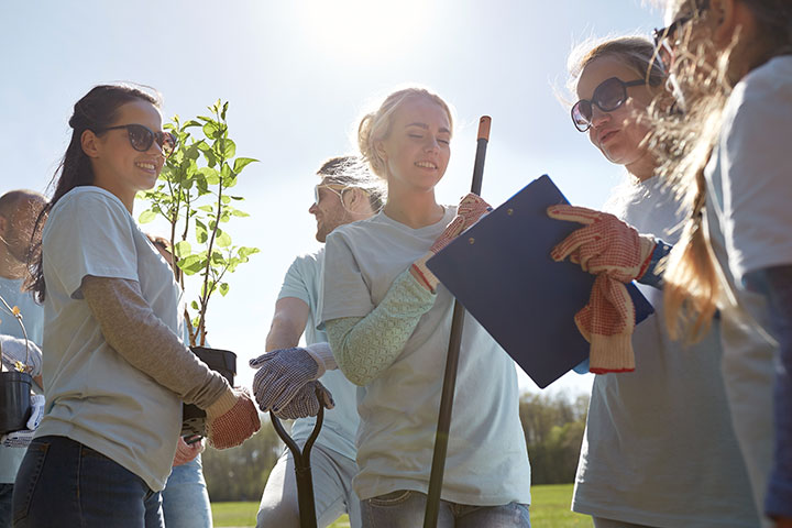 Group of young people volunteering to plant trees.