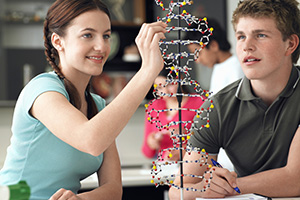 Teenagers working with a DNA model