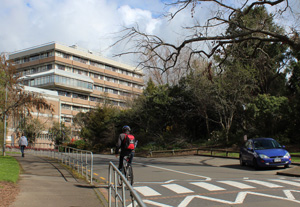 Massey University campus
