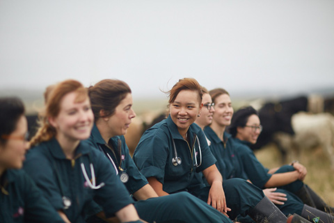 Group of female vet students in green overalls sitting in a paddock
