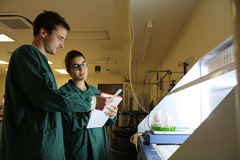 Two staff members looking at chemical engineering experiment