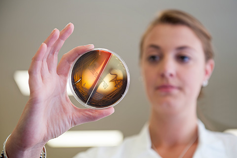 Woman holding up petri dish