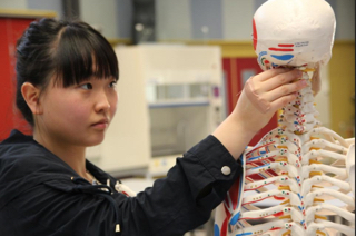 Student inspects skeleton