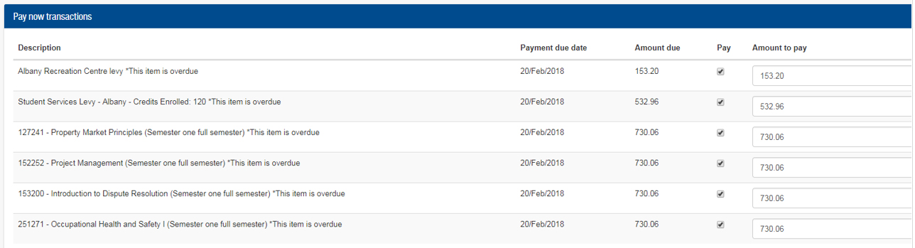 Pay now transactions example