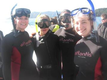 Snorkling with dolphins on the South Island.jpg