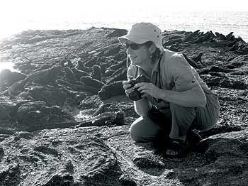 Alison Ballance and marine iguanas, Fernandina Island in the Galapagos Photo by John Madunich