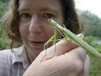 Alison Ballance and praying mantis, Balahala Reserve, southern Thailand. Photo by Joseph Pontecorvo