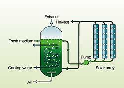 bio-reactor.jpg
