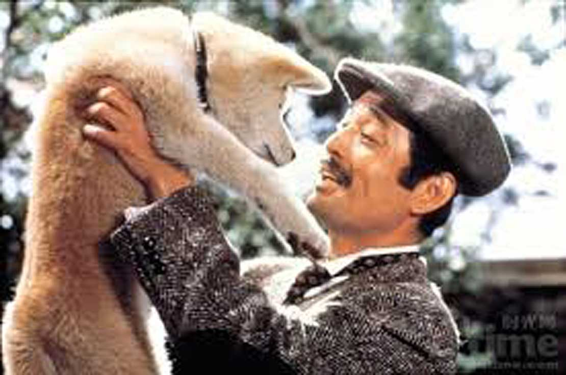 Japanese classic film Hachiko to screen in March - Massey ...