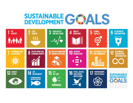 Master of Sustainable Development Goals: Disaster Management