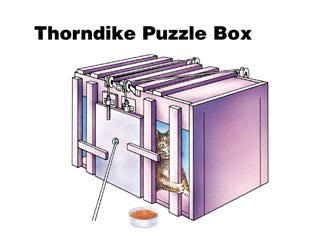 thorndike trial and error